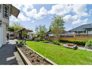 """Photo 20: 16856 57B Avenue in Surrey: Cloverdale BC House for sale in """"RICHARDSON RIDGE"""" (Cloverdale)  : MLS®# F1423543"""