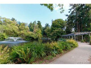 Photo 15: 252 ontario Street in VICTORIA: Vi James Bay Strata Duplex Unit for sale (Victoria)  : MLS®# 367155