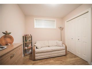 Photo 36: 84 CHAPALA Square SE in Calgary: Chaparral House for sale : MLS®# C4074127