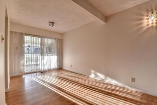 Photo 6: 8021 133A Street in Surrey: West Newton House for sale : MLS®# R2108441