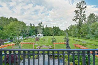 Photo 17: 12362 238 Street in Maple Ridge: East Central House for sale : MLS®# R2144969