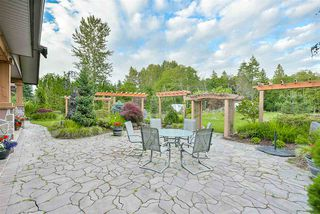 Photo 19: 12362 238 Street in Maple Ridge: East Central House for sale : MLS®# R2144969