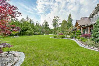 Photo 4: 12362 238 Street in Maple Ridge: East Central House for sale : MLS®# R2144969