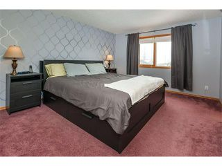 Photo 14: 317 CITADEL HILLS Circle NW in Calgary: Citadel House for sale : MLS®# C4112677
