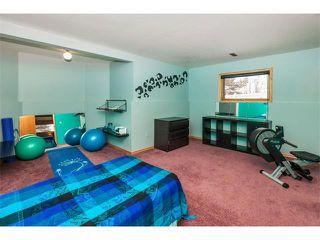 Photo 23: 317 CITADEL HILLS Circle NW in Calgary: Citadel House for sale : MLS®# C4112677