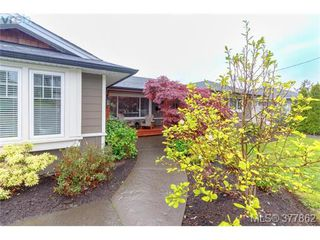 Photo 2: 507 Whiteside St in VICTORIA: SW Tillicum House for sale (Saanich West)  : MLS®# 758744