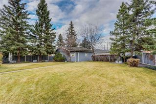 Photo 36: 132 LAKE ADAMS Green SE in Calgary: Lake Bonavista House for sale : MLS®# C4142300