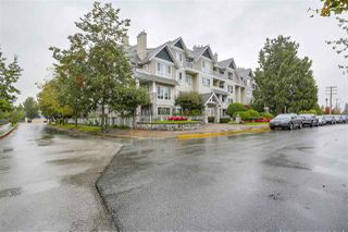 Photo 1: 116 19091 MCMYN ROAD in Pitt Meadows: Mid Meadows Condo for sale : MLS®# R2213560