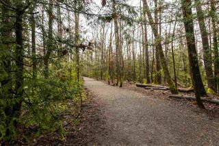 Photo 20: 2402 KITCHENER Avenue in Port Coquitlam: Woodland Acres PQ House for sale : MLS®# R2254792