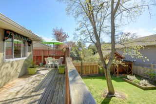 Photo 15: 1146 Hampshire Road in VICTORIA: OB South Oak Bay Single Family Detached for sale (Oak Bay)  : MLS®# 389899