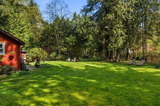 Photo 16: 23299 130 Avenue in Maple Ridge: East Central House for sale : MLS®# R2262762
