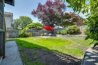 Photo 17: 20291 116B Avenue in Maple Ridge: Southwest Maple Ridge House for sale : MLS®# R2271520