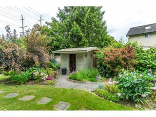 Photo 19: 20845 94B Avenue in Langley: Walnut Grove House for sale : MLS®# R2278608