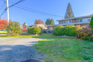 Photo 3: 3320 EDINBURGH Street in Port Coquitlam: Glenwood PQ House 1/2 Duplex for sale : MLS®# R2317364