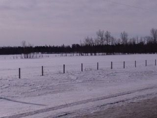 Photo 3: 57220 RR 231: Rural Sturgeon County Rural Land/Vacant Lot for sale : MLS®# E4147513