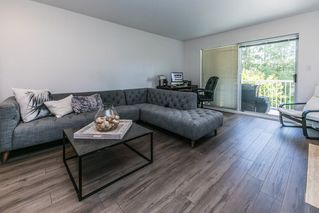 "Photo 2: 203 11601 227 Street in Maple Ridge: East Central Condo for sale in ""CASTLEMOUNT"" : MLS®# R2383867"