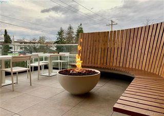 Photo 9: 212 1033 Cook St in VICTORIA: Vi Downtown Condo Apartment for sale (Victoria)  : MLS®# 830442