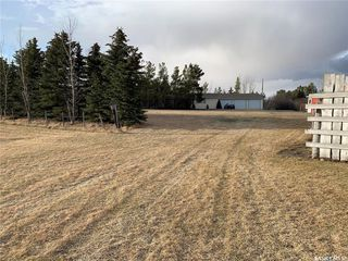 Photo 50: Albus Acreage in Dufferin: Residential for sale (Dufferin Rm No. 190)  : MLS®# SK805686