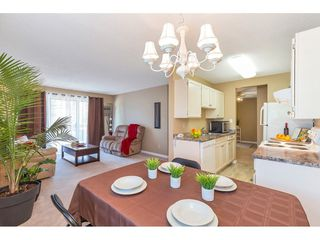 "Photo 1: 101 9425 NOWELL Street in Chilliwack: Chilliwack N Yale-Well Condo for sale in ""SEPASS COURT"" : MLS®# R2481204"
