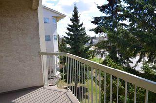 Photo 9: 305 18020 95 Avenue in Edmonton: Zone 20 Condo for sale : MLS®# E4214451