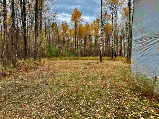 Photo 24: #7 North Pigeon Lake Estates: Rural Wetaskiwin County Rural Land/Vacant Lot for sale : MLS®# E4217407