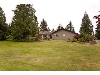 Photo 8: 15146 HARRIS Road in Pitt Meadows: North Meadows House for sale : MLS®# V899524