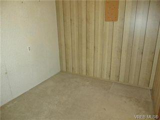 Photo 10: 3456 Calumet Ave in VICTORIA: SE Quadra House for sale (Saanich East)  : MLS®# 686491
