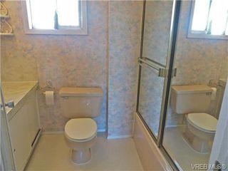 Photo 5: 3456 Calumet Ave in VICTORIA: SE Quadra House for sale (Saanich East)  : MLS®# 686491