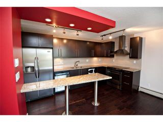 Photo 4: 403 1231 17 Avenue NW in Calgary: Capitol Hill Condo for sale : MLS®# C4021349