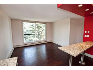 Photo 7: 403 1231 17 Avenue NW in Calgary: Capitol Hill Condo for sale : MLS®# C4021349
