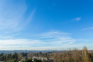 "Photo 20: 905 9280 SALISH Court in Burnaby: Sullivan Heights Condo for sale in ""EDGEWOOD PLACE"" (Burnaby North)  : MLS®# R2033469"