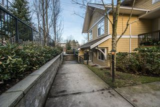 "Photo 26: 5 6878 SOUTHPOINT Drive in Burnaby: South Slope Townhouse for sale in ""CORTINA"" (Burnaby South)  : MLS®# R2143972"