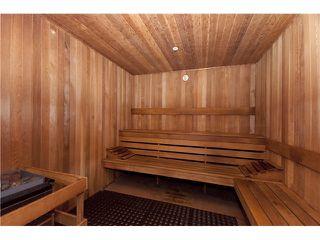 Photo 17: # 231 5735 HAMPTON PL in Vancouver: University VW Condo for sale (Vancouver West)  : MLS®# V1092532