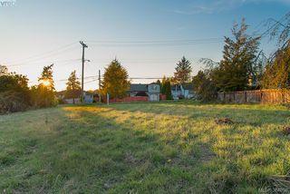 Photo 1: 3281 Cedar Hill Rd in VICTORIA: SE Cedar Hill Land for sale (Saanich East)  : MLS®# 773555