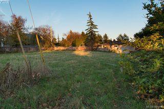 Photo 7: 3281 Cedar Hill Rd in VICTORIA: SE Cedar Hill Land for sale (Saanich East)  : MLS®# 773555