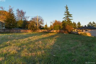Photo 3: 3281 Cedar Hill Rd in VICTORIA: SE Cedar Hill Land for sale (Saanich East)  : MLS®# 773555