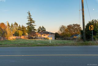 Photo 8: 3281 Cedar Hill Rd in VICTORIA: SE Cedar Hill Land for sale (Saanich East)  : MLS®# 773555
