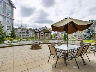 "Photo 14: 209 6440 194 Street in Surrey: Clayton Condo for sale in ""WATERSTONE"" (Cloverdale)  : MLS®# R2270784"