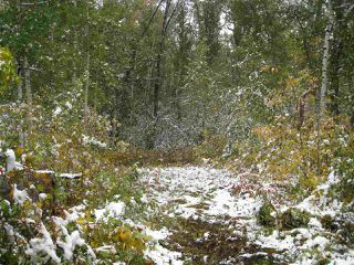 Main Photo: 3 Spruce Rd: Rural Lac Ste. Anne County Rural Land/Vacant Lot for sale : MLS®# E4129254