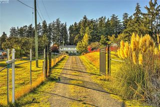 Photo 16: 4520 Markham Street in VICTORIA: SW Beaver Lake Single Family Detached for sale (Saanich West)  : MLS®# 400436