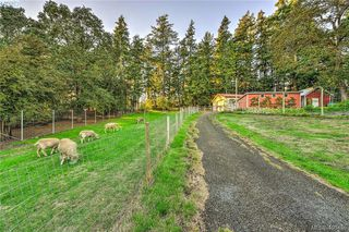Photo 18: 4520 Markham Street in VICTORIA: SW Beaver Lake Single Family Detached for sale (Saanich West)  : MLS®# 400436