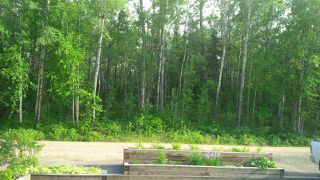 Main Photo: 38 Birch Lane: Rural Parkland County Rural Land/Vacant Lot for sale : MLS®# E4136508