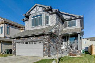 Photo 28: 42 ASHTON Gate: Spruce Grove House for sale : MLS®# E4143040