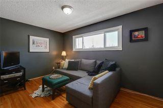 Photo 26: 10636 MAPLEGLEN Crescent SE in Calgary: Maple Ridge Detached for sale : MLS®# C4225392