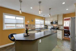 Photo 15: 10636 MAPLEGLEN Crescent SE in Calgary: Maple Ridge Detached for sale : MLS®# C4225392