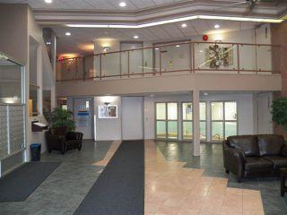 Photo 19: 105 15499 CASTLE_DOWNS Road in Edmonton: Zone 27 Condo for sale : MLS®# E4146988