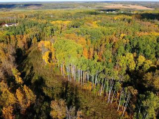 Photo 10: 0 RGE RD 15 TWP ROAD 552: Rural Lac Ste. Anne County Rural Land/Vacant Lot for sale : MLS®# E4154842