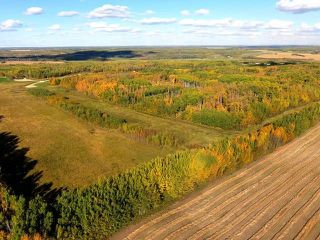 Photo 7: 0 RGE RD 15 TWP ROAD 552: Rural Lac Ste. Anne County Rural Land/Vacant Lot for sale : MLS®# E4154842