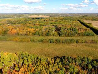 Photo 8: 0 RGE RD 15 TWP ROAD 552: Rural Lac Ste. Anne County Rural Land/Vacant Lot for sale : MLS®# E4154842
