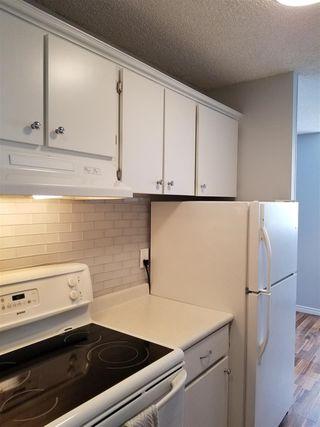 Photo 8: 509 13910 Stony Plain Road in Edmonton: Zone 11 Condo for sale : MLS®# E4164738